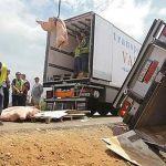 Agredido un camionero español cuando grababa un acto de sabotaje en La Junquera