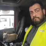 La perrita rescatada por un camionero en una carretera de Seseña (Toledo) vuelve con su familia
