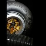 Un ratón utiliza el turbo a modo de despensa causando daños irreparables