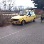 Vídeo maltrato animal: un hombre lleva 2 perros atados a un Renault4 en marcha