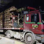 Camión inmovilizado y multa de 4.000 euros por superar la carga máxima en un 45%