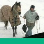 Una chica de 18 años recorre 20 kilómetros de nieve a caballo para ayudar a un camionero