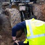 Seis detenidos en Jumilla por el robo de tractores para competir en carreras rurales