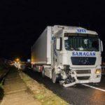 """Un camionero atropelló en la A8 un jabalí, generó una avería de 4.900€ y el culpable """"es él"""""""