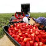 España ofrece 951 puestos de trabajo a ciudadanos rumanos en EURES Rumanía