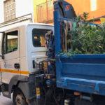 Cinco camiones de marihuana en Martorell