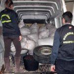 Seis rumanos detenidos por robar 12.500 kilos de aceitunas en Esparragalejo y Guareña