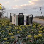 La G C detiene al conductor de un camión tras sufrir un accidente y multiplicar por 6 el máximo de alcohol en Lorca