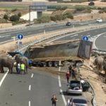 Circos Reunidos no descarta el sabotaje tras el accidente del camión en el que ha muerto un elefante