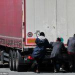 En libertad un camionero murciano acusado de contrabando humano, por que durante la inspección no había un agente de la policía judicial