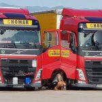 """""""Condiciones de vida inhumanas"""", son camioneros que se convierten en cómplices forzados de los empleadores"""