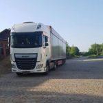 Elespañol.com dice que el camión iba a 120 km/h y pidiendo paso