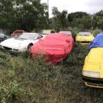 La triste historia del campo de Ferraris clásicos abandonados