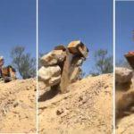 El estremecedor y aparatoso vuelco de un camión cargado de rocas