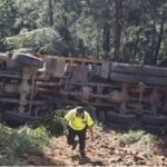El camionero que falleció en Cuntis, cumpliría  hoy 33 años, y murió al orillarse cargado en el camino
