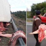 Saquean un camión con carne de cerdo arrastras, en moto y en coches en Argentina