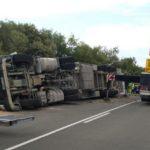 Mueren 130 cerdos en el accidente de un camión en Lascuarre