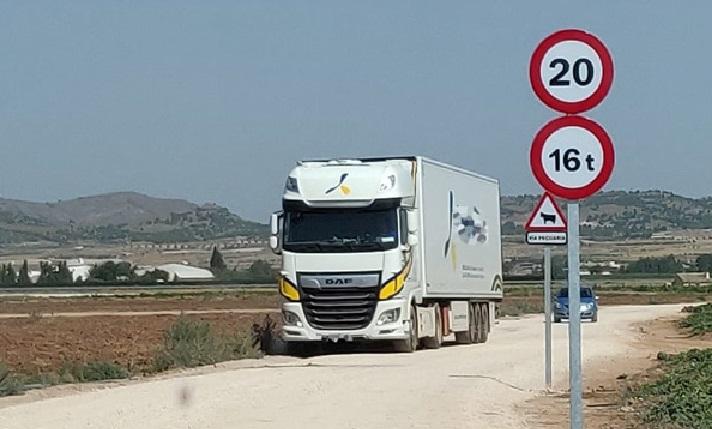 camionesintensivos