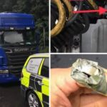 Un camionero rumano atrapado con el mono en la caja de cambios: le dijo a la policía que sería del zoológico.
