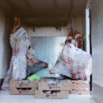 Nueve mil euros de multa al chófer de un camión, por varias infracciones y transportar carne ilegal