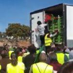 Agricultores de Jaén atacan un camión marroquí tirando la carga de verduras sobre la A4