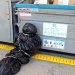 Un empleado desfigurado y arrojado al basurero ¡Los empleadores querían enmascarar todo!