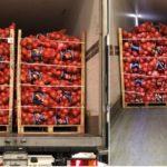 Donan 20 camiones de 24.000 Kg de cebollas para comprar mascarillas y guantes a hospitales