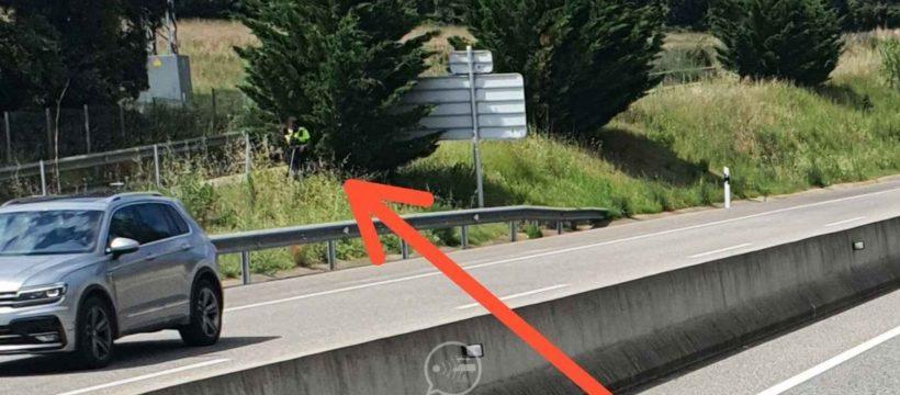El agente de tránsit tras un árbol con un radar láser para multar: la foto que indigna a los conductores