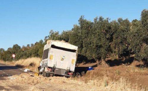 Fallece el conductor de un camión al caerle encima la carga de otro con el que se cruzó cerca de Zalamea de la Serena