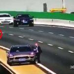 Un idiot usa un gato como triángulo de seguridad y causa el terrible accidente de un camión y un coche