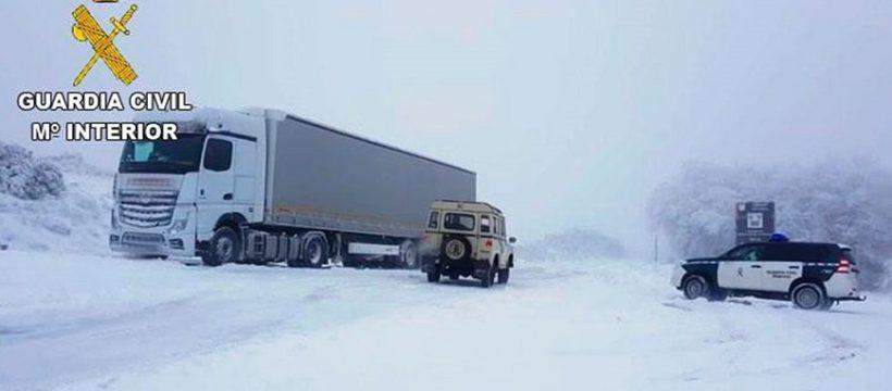 camionero fonceb