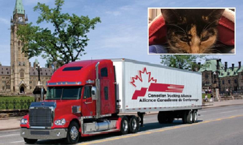 Camión canadiens
