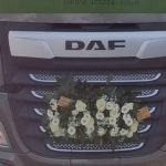 La muerte de un camionero que nadie ayudó desencadena un debate.