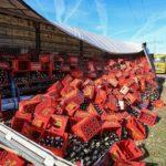Un camión pierde 1.000 cajas de cerveza  por no asegurar suficientemente la carga