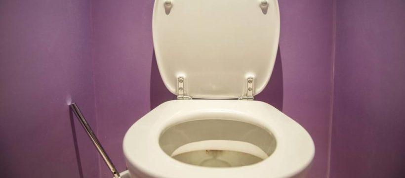 toilette202 v contentxl