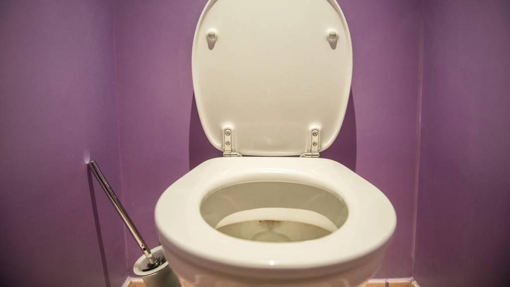 toilette202 v