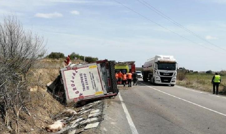 accidente mortal de un camionero que transportaba cerdos entre malejan y bulbuente